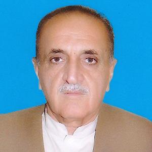 Agha Syed Liaqat Ali