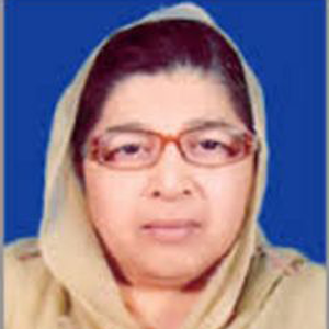 Anisa Zeb Tahirkheli