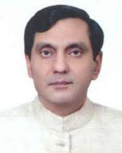 Hamid Nasir Chattha