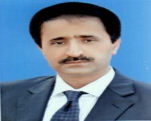 Mahmood ul Hassan