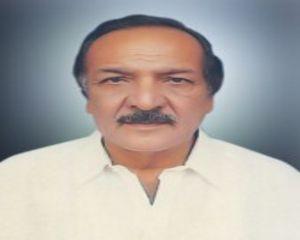 Makhdoom Syed Ali Raza Shah