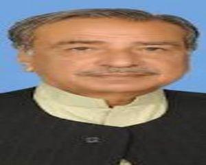 Malik Sultan Mehmood Hanjra